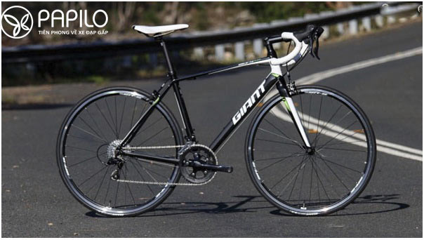 Xe đạp Road Bike là xe đạp đường trường